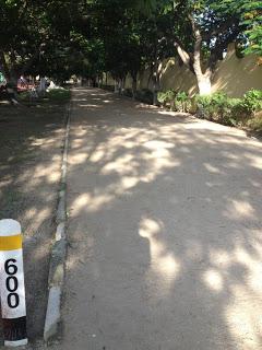 Alvarado Walk